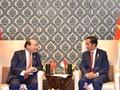 Bertemu PM Vietnam, Jokowi Protes Proteksionisme Otomotif