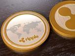 Kapitalisasi Koin Digital Ini Hilang Rp 134 T dalam 2 Hari