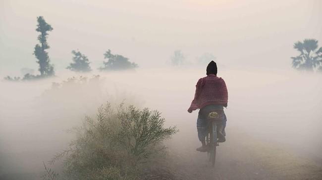 Seorang pekerja India mengendarai sepeda menembus tanah pertanian di pagi berkabut yang dingin di Kolkata. (AFP/ Dibyangshu SARKAR)