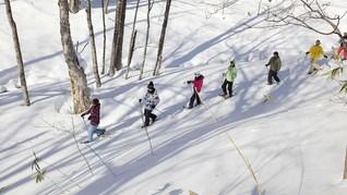 Destinasi Ski Terbaik Bulan Maret