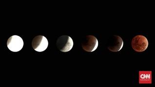 Hari Ini Terjadi Gerhana Bulan 'Super Blood Wolf Moon'