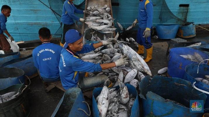 Ikan impor berasal dari China dan negara-negara lain.