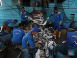 Jokowi Ingatkan Menterinya Tak Sembarang Beri Izin Perikanan