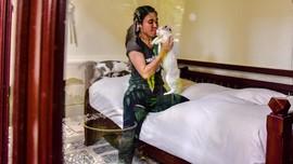 FOTO: Sang Pelindung Kucing Terlantar