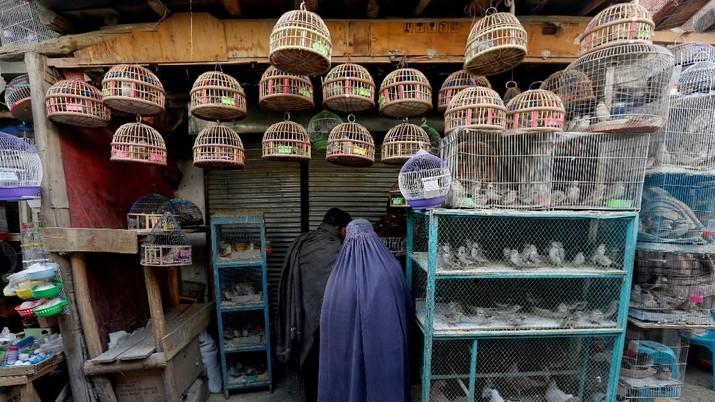 Sayap Sukacita Pasar Burung Kabul