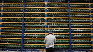 FOTO: Hutan 'Disulap' Jadi Pusat Penambangan Bitcoin
