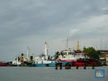 Ekspor Batu Bara Wajib Pakai Kapal RI, Ini Respons Pelayaran