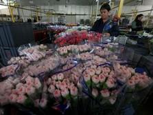 Hari Valentine Jadi Berkah Bagi Pengangguran di Kolombia