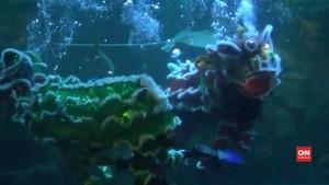 VIDEO: Imlek, Barongsai 'Beraksi' di Aquarium Raksasa