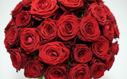 Ini Buket Bunga Paling Mahal untuk Hari Valentine, Harganya Rp 94 Juta