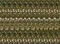 Cara yang sering dilakukan dengan mendekatkan pandangan ke gambar stereogram, kaburkan pandangan sambil menjauhi gambar tersebut. Objek 3 dimensi akan muncul pada gambar yang ada dihadapanmu. (Foto: Internet)