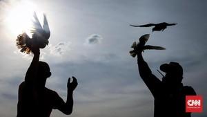 FOTO: Menerbangkan Merpati, Melepas Penat Sesak Jakarta
