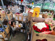 Bisnis Bunga Merekah Selama Perayaan Valentine dan Imlek