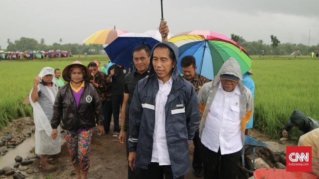 Jokowi Desak Kementerian Bentuk Proyek Padat Karya Perdesaan