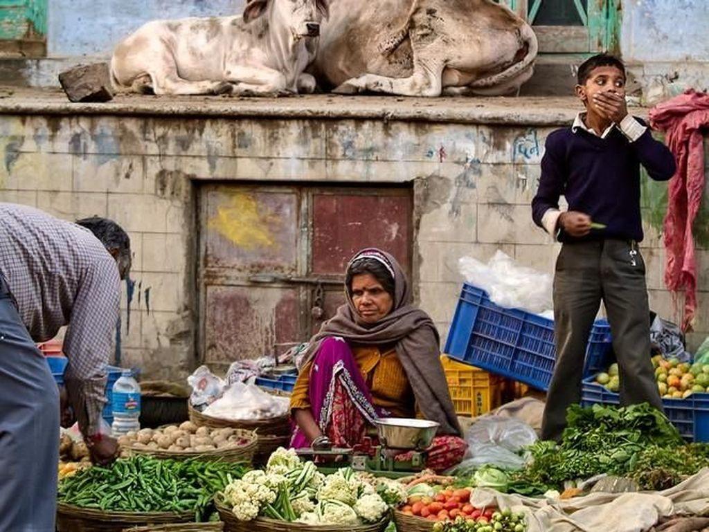 Pushkar market scene karya PierreTurtaut. Foto: Viewbug