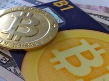 Bergerak Bak Roller Coster, Bitcoin Turun ke Rp 101 Juta