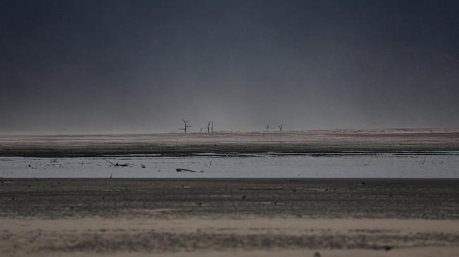 Penghematan air dan kemurahan hati para petani membawa angin segar bagi pusat wisata Afrika Selatan yang lama dilanda kekeringan. (REUTERS/Mike Hutchings)