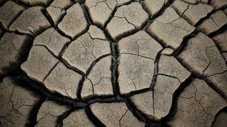 PBB: Dunia dalam Bahaya Krisis Air Global