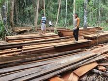 RI Dorong Ekspor Kayu Olahan untuk Selamatkan Rupiah