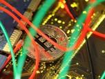 Eks Bos Paypal: Bitcoin Tak Bernilai, Harga Terus Anjlok
