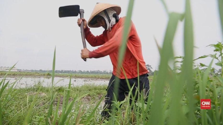 Bangga Jadi Petani di Ibu Kota