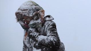 38 Orang Tewas Akibat Longsor Salju di Turki