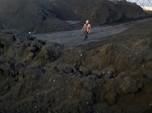 Harga Batu Bara Acuan Sentuh Level Tertinggi Dalam 5 Tahun