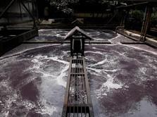 Citarum Dicemari Limbah Industri 349.000 Ton Setiap Hari