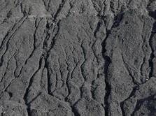 Reli Berlanjut, Harga Saham Emiten Batu Bara Naik di Atas 2%