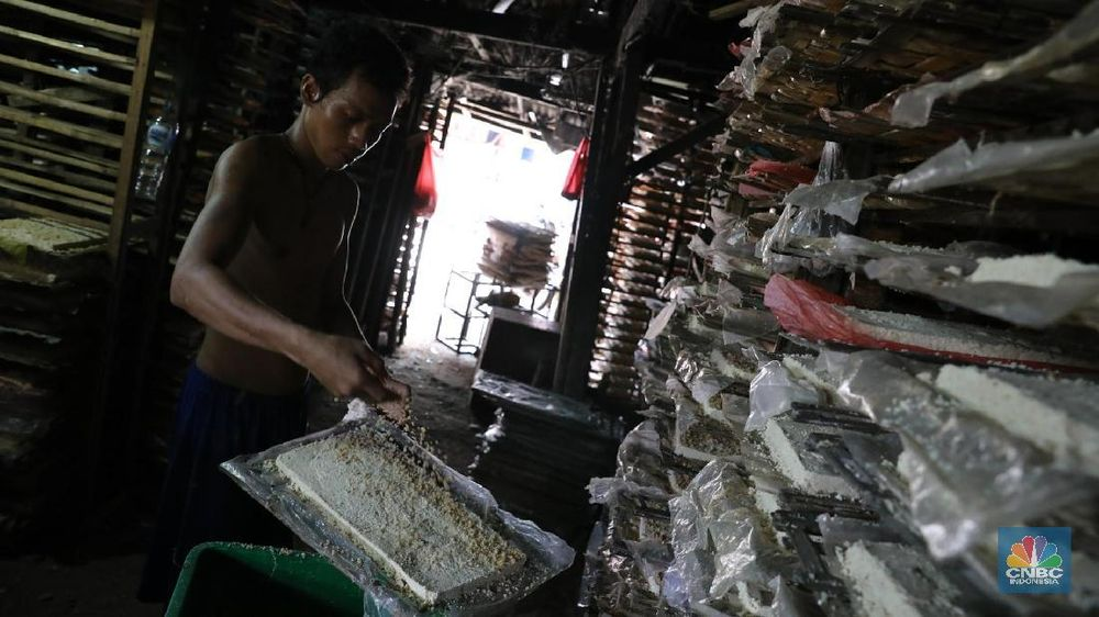 Industri golongan Usaha Mikro, Kecil dan Menengah (UMKM) tersebut memproduksi oncom untuk wilayah Jakarta dan sekitarnya dengan harga Rp 4.000 per kotak.