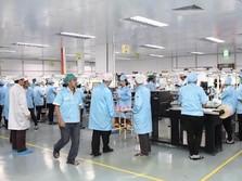 Ekspor Perdana ke AS, Saham Sat Nusa Melesat 11%