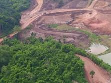 Produksi Emas Merdeka Copper Capai 147 Ribu troi ons di 2017