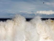 Ada Prediksi Tsunami 'Raksasa' Selatan Jawa Sampai ke Jakarta