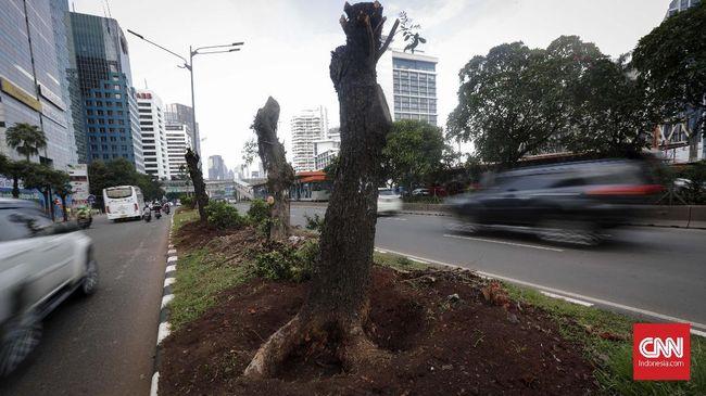 Pemindahan Ibu Kota, Lahan di Kalteng Mulai Dipetakan
