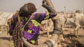 Tak berdaya, mereka tetap tinggal bersama ternaknya di lahan dengan latar belakang pemandangan kekeringan dan kelaparan. (AFP Photo/Stefanie Glinski)