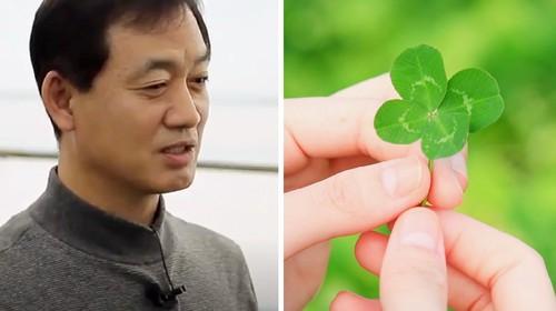 Jualan Daun, Pria Ini Berhasil dapat Penghasilan Rp 1,3 M Sebulan