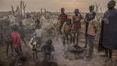 Ketika musim kering datang, para gembala dari suku Dinka di Sudan Selatan menggiring peliharaan mereka ke pinggir Sungai Nil dan mendirikan tenda di sana. Namun ternyata, daerah tersebut juga dilanda kekeringan. (AFP Photo/Stefanie Glinski)