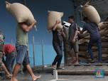 Pak Jokowi, Impor Gula Cuma Untungkan Pemburu Rente Lho