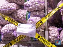 Kemendag Temukan 5 Ton Bibit Bawang Putih Impor Ilegal