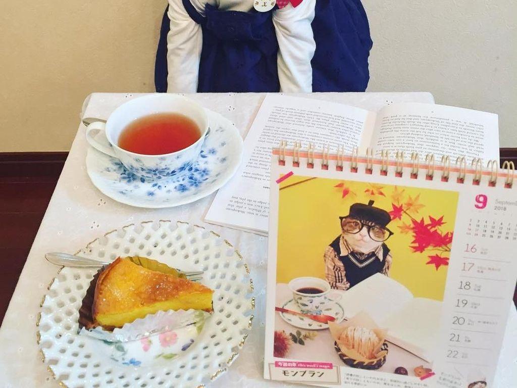 Kala itu ada festival lokal, lalu saya membawa happi (mantel tradisional Jepang) untuk hewan dan memakaiannya ke Maro. Sejak itu, Maro mulai cosplay, ungkap sang pemilik, Rie Matsui. Foto: Instagram @rinne172