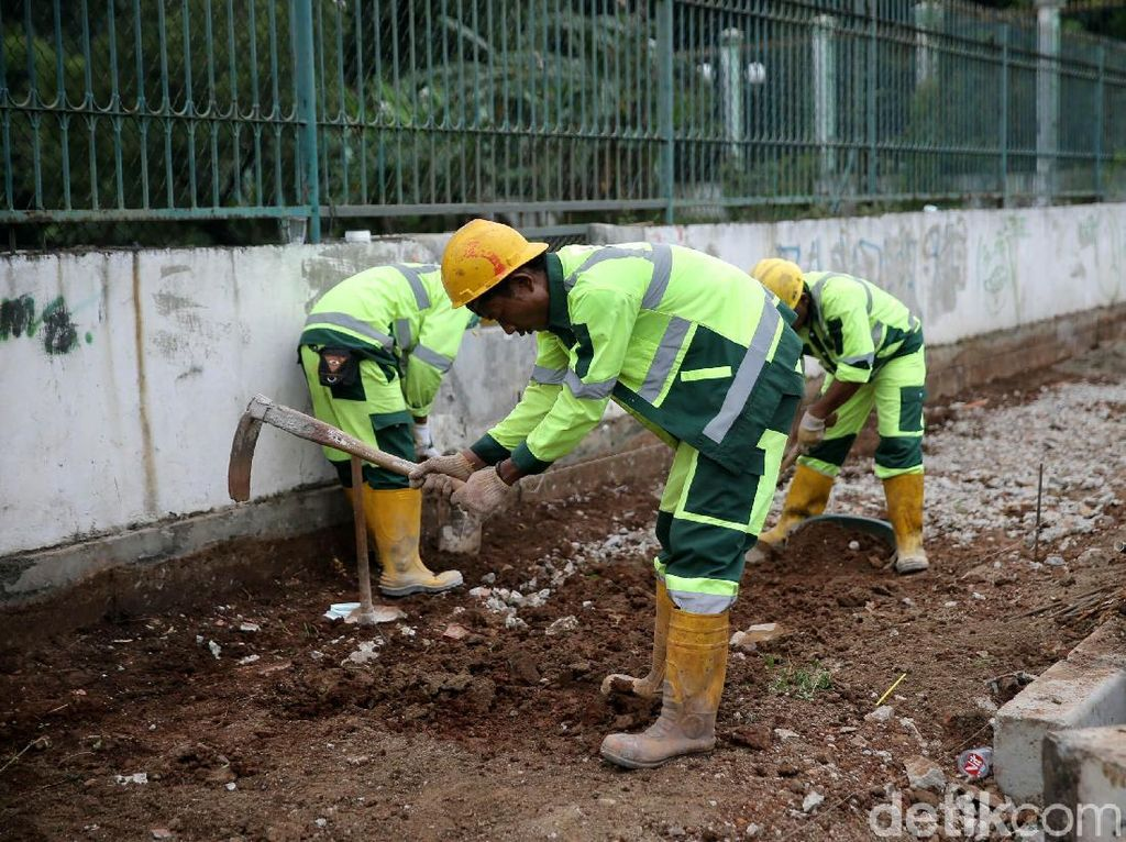 Tiga orang pekerja meratakan tanah yang akan dibangun trotoar.