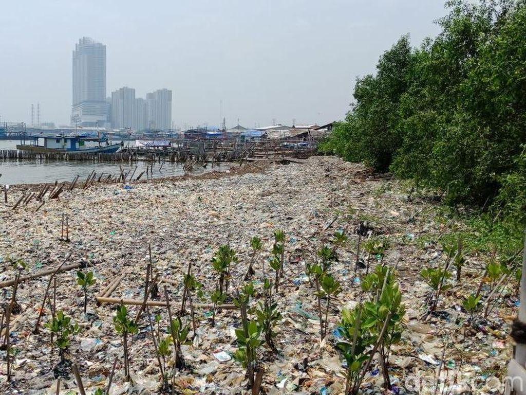 Sampah-sampah itu didominasi sampah rumah tangga serta sampah plastik (Foto: Eva Safitri/detikcom)