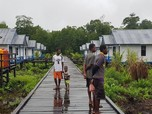 Papua Sudah Diguyur Rp127 T, Tapi Kok Masih Belum Sejahtera?