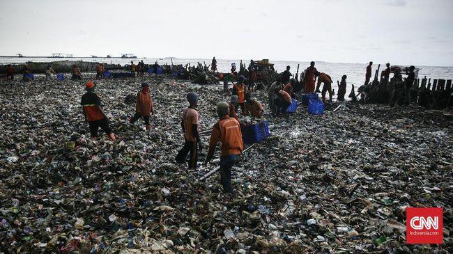 'Reklamasi' Sampah Jakarta dan Dilema Kawasan Mangrove