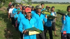VIDEO: Ritual Petik Padi Perdana Ponorogo