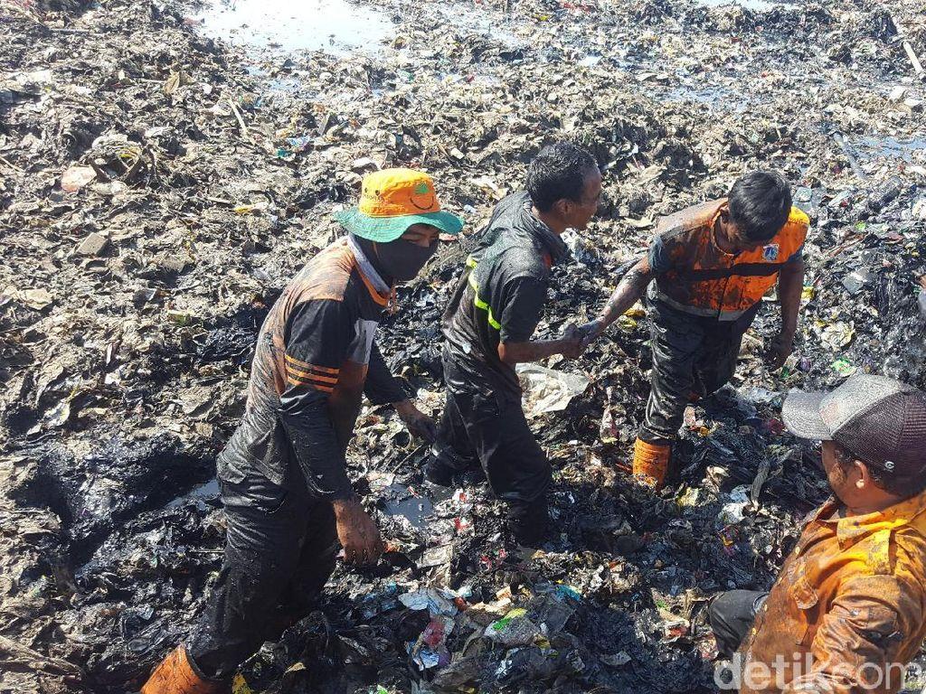 Potret petugas yang berkubang di lautan sampah itu diambil pada Minggu, 18 Maret 2018 (Foto: Zunita Amalia Putri/detikcom)