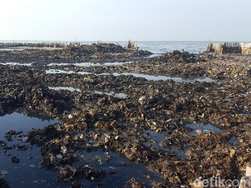 Penampakan terkini sampah itu tampak bercampur lumpur (Foto: Zunita Amalia Putri/detikcom)