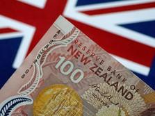 Takut Resesi Karena Corona, Bunga di Selandia Baru Nyaris 0%