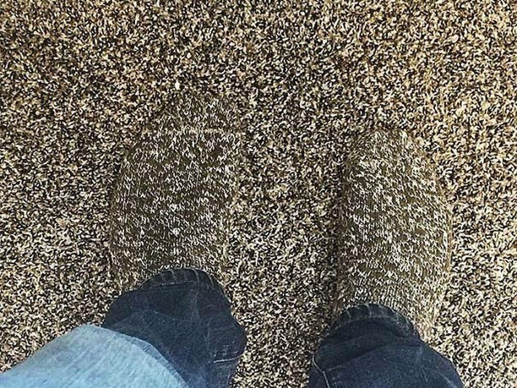 Kaos kaki persis dengan karpet di lantai. Foto: boredpanda