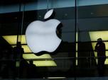 Ini Bocoran Apple iPhone Murah yang Mau Dirilis Pekan Depan